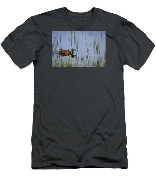 Cinnamon Teal Adult Male Men's T-Shirt (Athletic Fit)