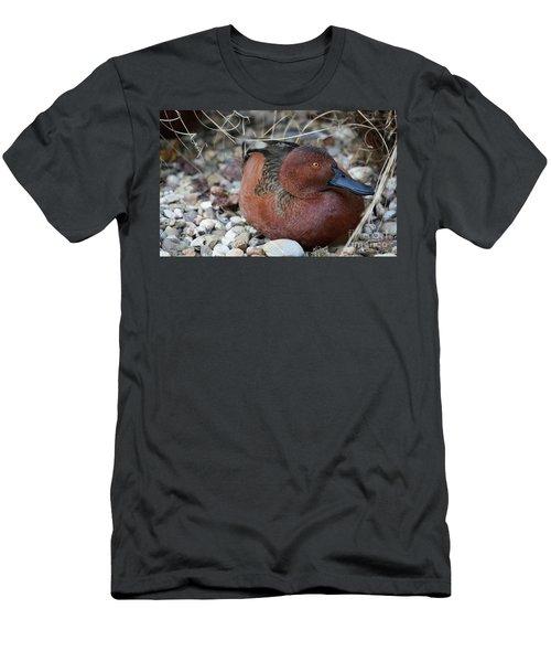 Cinnamon Teal Men's T-Shirt (Athletic Fit)