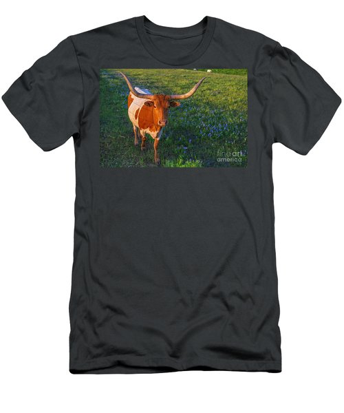 Classic Spring Scene In Texas Men's T-Shirt (Athletic Fit)