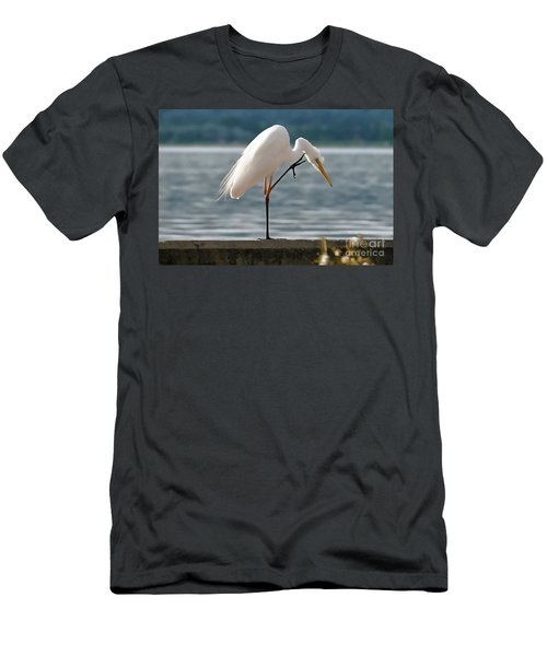 Cleaning White Egret Men's T-Shirt (Athletic Fit)
