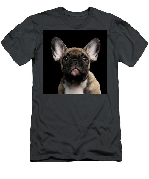 Men's T-Shirt (Athletic Fit) featuring the photograph Closeup Portrait French Bulldog Puppy, Cute Looking In Camera by Sergey Taran
