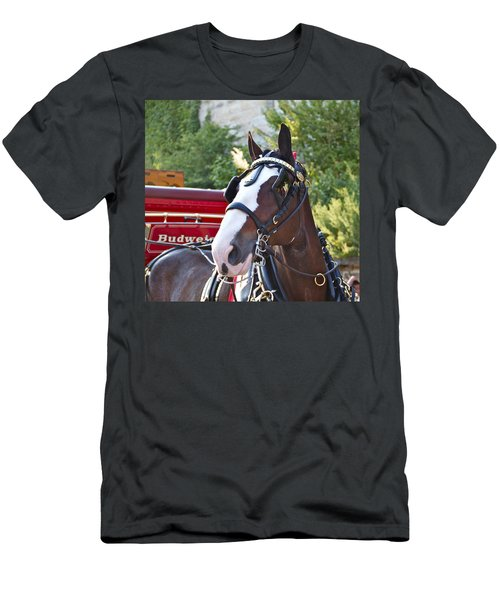 Clydesdale At Esp Men's T-Shirt (Athletic Fit)