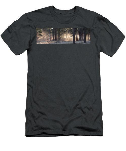 Coconino Dawn Men's T-Shirt (Athletic Fit)