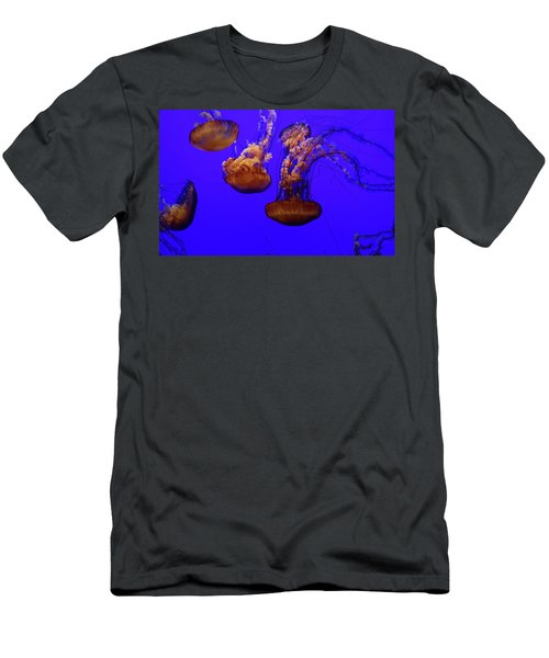 Collection Of Jellyfish Men's T-Shirt (Athletic Fit)