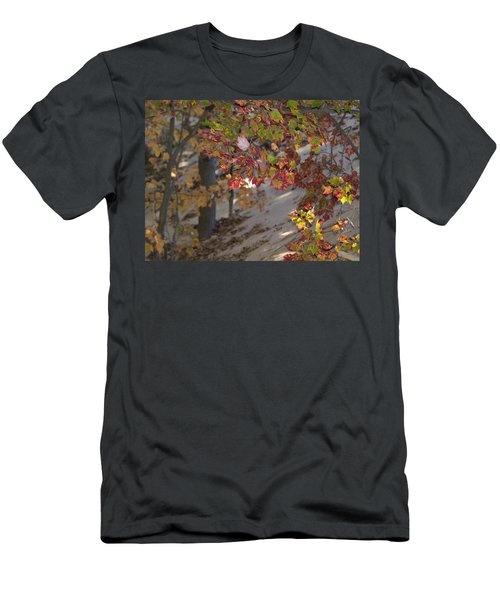 Color In The Dunes Men's T-Shirt (Athletic Fit)