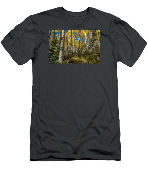 Colorado Fall Hike In The Aspens Men's T-Shirt (Slim Fit) by Michael J Bauer
