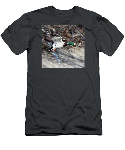 Colorado Mallard In Flight Men's T-Shirt (Athletic Fit)