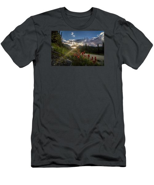 Colorado Wildflowers Under Evening Sun Men's T-Shirt (Athletic Fit)