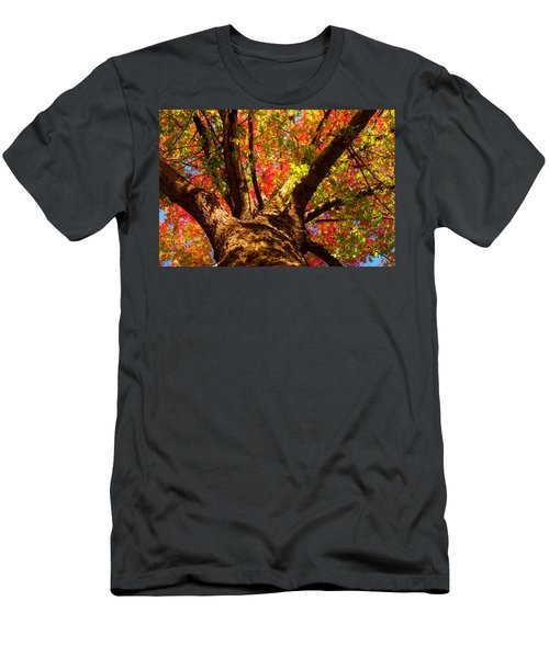 Colorful Autumn Abstract Men's T-Shirt (Athletic Fit)