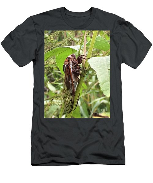 Colorful Summer Cicada Men's T-Shirt (Athletic Fit)
