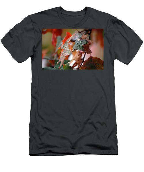 Colours Of Fall I Men's T-Shirt (Athletic Fit)