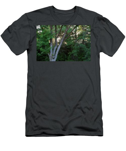 Comes The Dawn Men's T-Shirt (Athletic Fit)