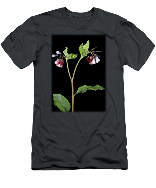 Comfrey Men's T-Shirt (Athletic Fit)