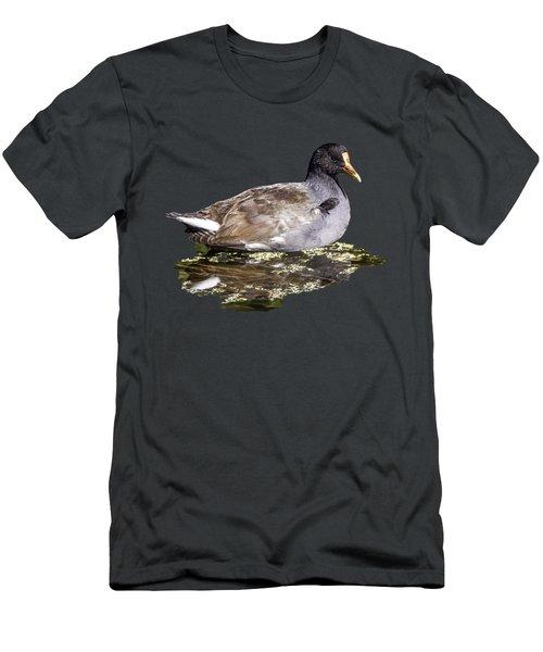 Common Gallinule Transparency Men's T-Shirt (Athletic Fit)