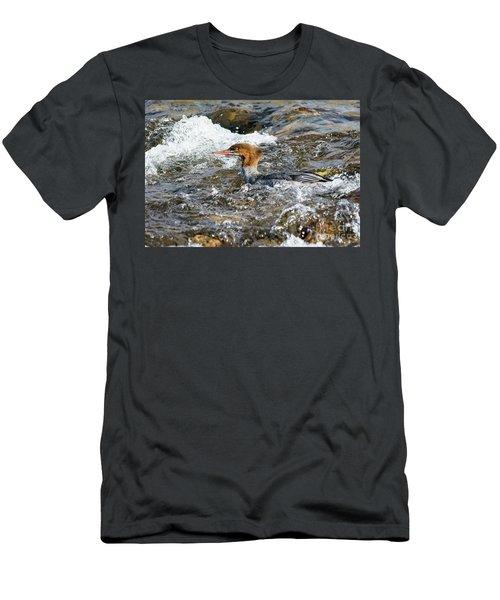 Common Merganser Men's T-Shirt (Athletic Fit)