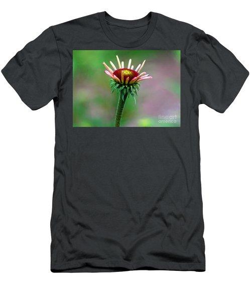 Coneflower Bloom Men's T-Shirt (Athletic Fit)