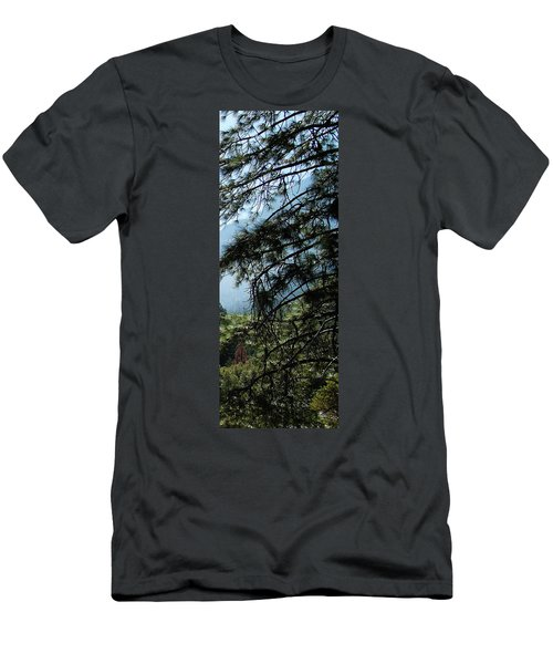 4 Of 4 Controlled Burn Of Yosemite Section Men's T-Shirt (Athletic Fit)