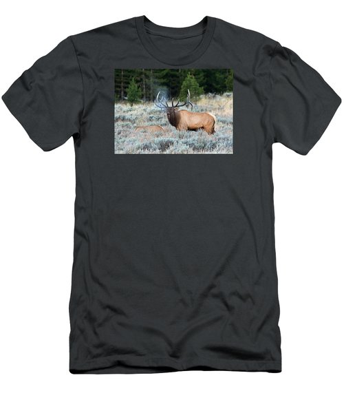 Cool Mornings Men's T-Shirt (Athletic Fit)