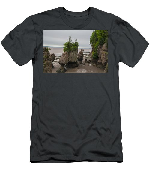 Cool Rocks Men's T-Shirt (Slim Fit) by Will Burlingham