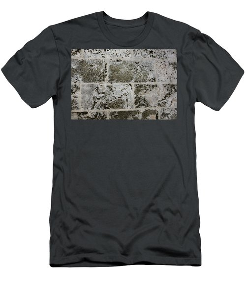 Coral Wall 205 Men's T-Shirt (Athletic Fit)