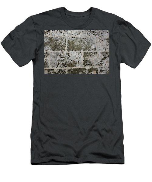 Coral Wall 205 Men's T-Shirt (Slim Fit)