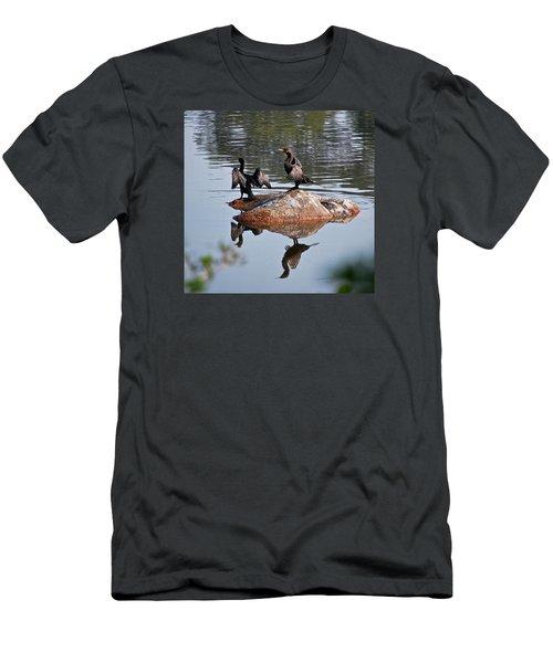 Cormorants Enjoying Warm Sun Men's T-Shirt (Athletic Fit)