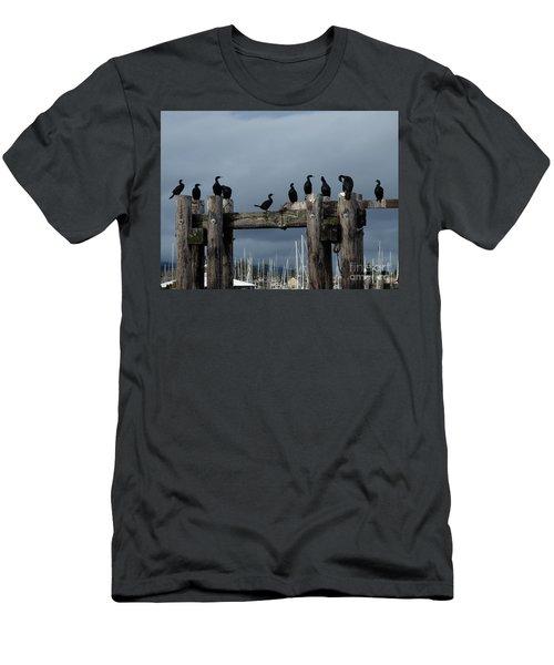 Cormorants Men's T-Shirt (Athletic Fit)