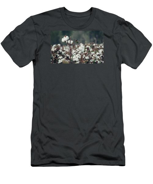 Cotton Field 5 Men's T-Shirt (Slim Fit) by Andrea Anderegg