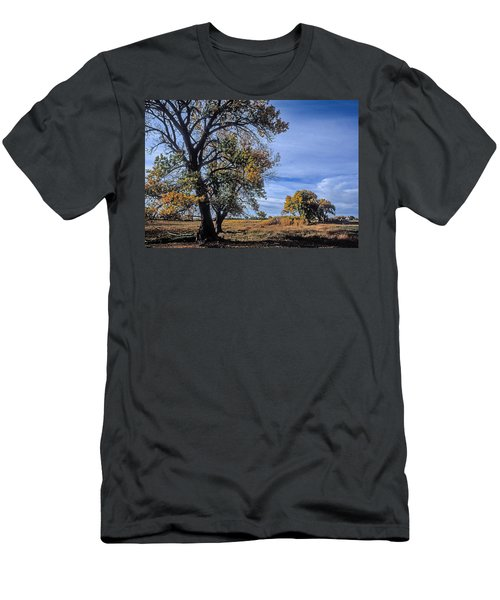 Cottonwood #5 Fall Ranch Colorado Blue Sky Men's T-Shirt (Slim Fit) by John Brink