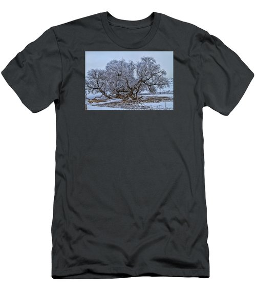 Cottonwood Sprawl Men's T-Shirt (Slim Fit) by Alana Thrower