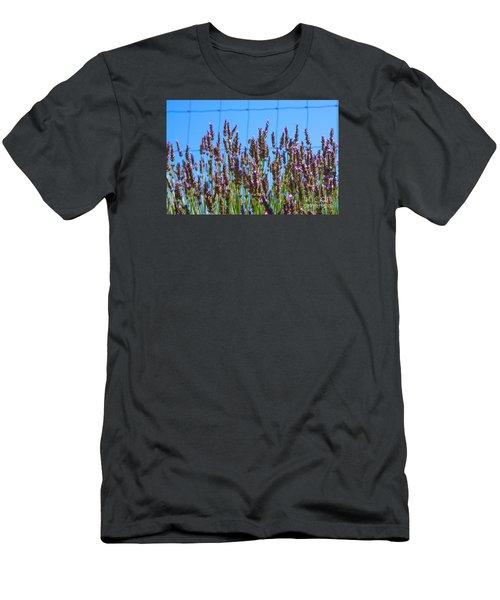 Country Lavender Iv Men's T-Shirt (Athletic Fit)