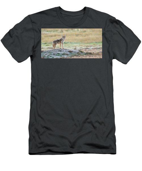 Coyotee Men's T-Shirt (Athletic Fit)