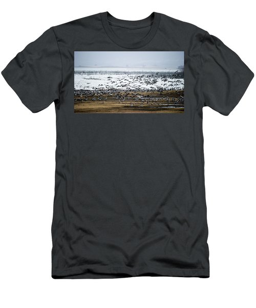 Crane Dance Men's T-Shirt (Slim Fit) by Torbjorn Swenelius