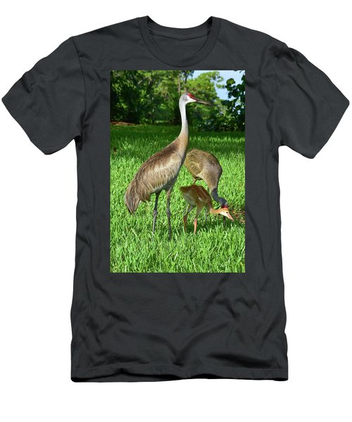 Crane Family Picnic Men's T-Shirt (Athletic Fit)