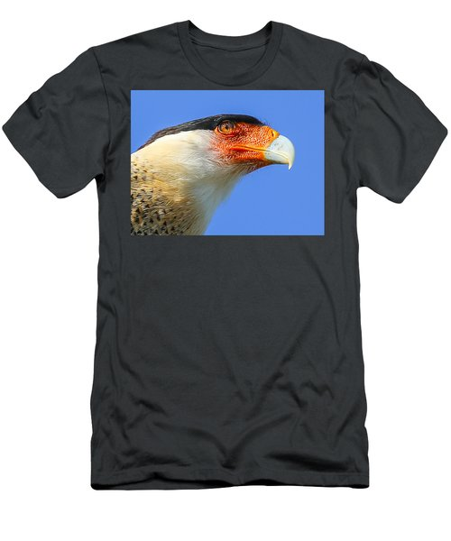 Crested Caracara Face Men's T-Shirt (Athletic Fit)