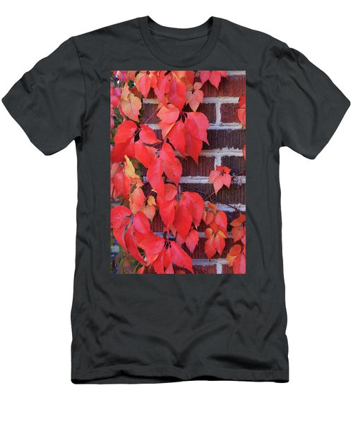 Men's T-Shirt (Athletic Fit) featuring the photograph Crimson Leaves by David Chandler