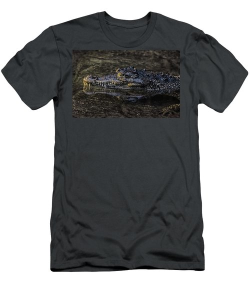 Crocodile Reflections Men's T-Shirt (Athletic Fit)