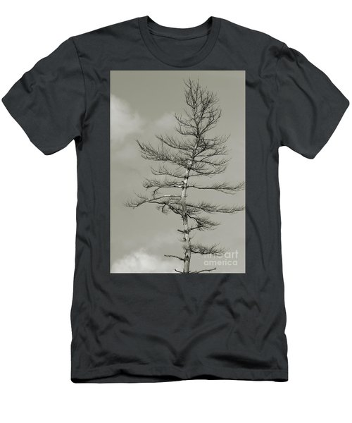 Crooked Tree Men's T-Shirt (Athletic Fit)
