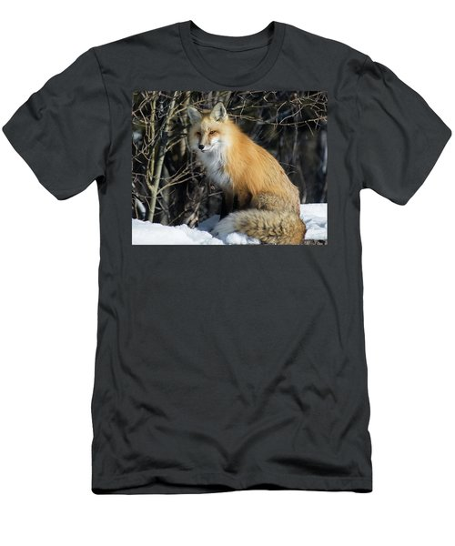 Crossroads With A Red Fox Men's T-Shirt (Athletic Fit)