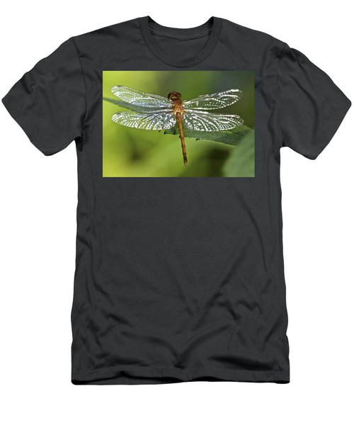 Crystal Wings Men's T-Shirt (Athletic Fit)