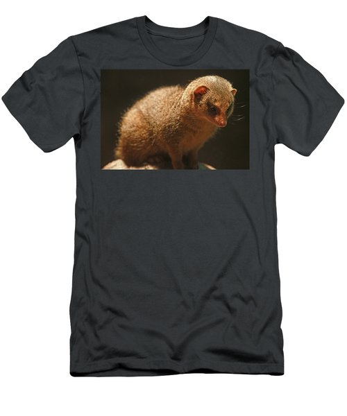 Men's T-Shirt (Slim Fit) featuring the photograph Curiosity At Rest by Laddie Halupa