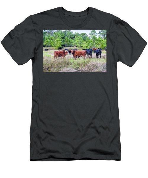 Curiosity Men's T-Shirt (Athletic Fit)