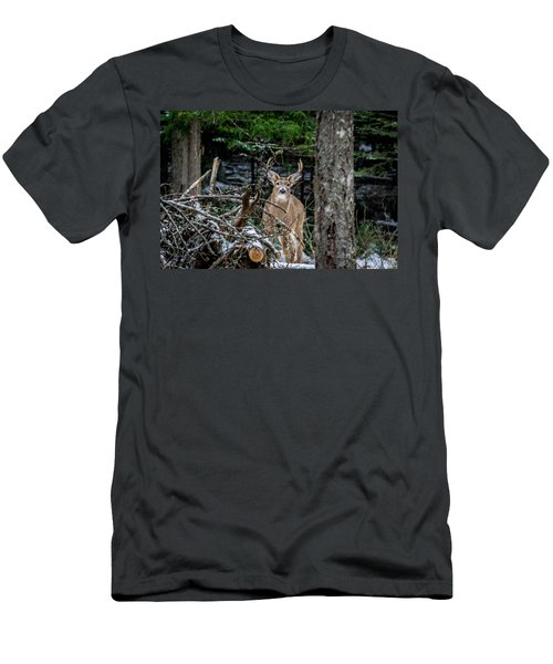Curious Buck Men's T-Shirt (Athletic Fit)