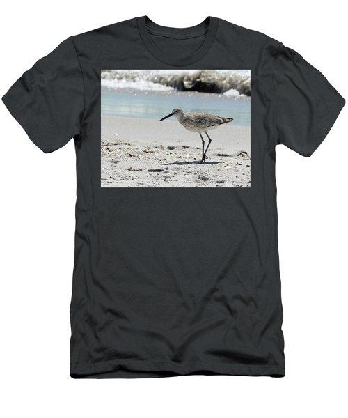 Daddy Longlegs Men's T-Shirt (Athletic Fit)