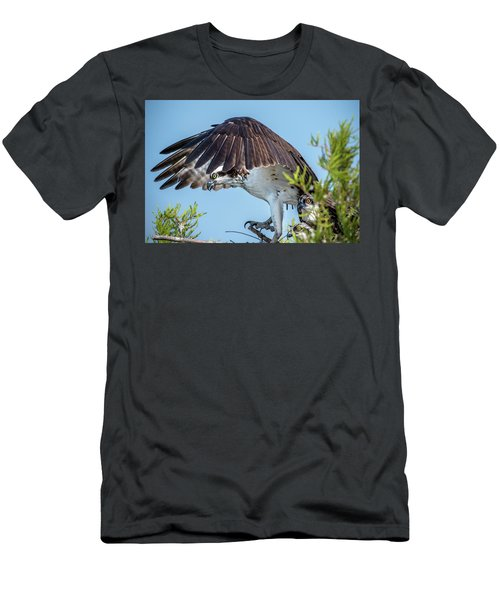 Daddy Osprey On Guard Men's T-Shirt (Athletic Fit)