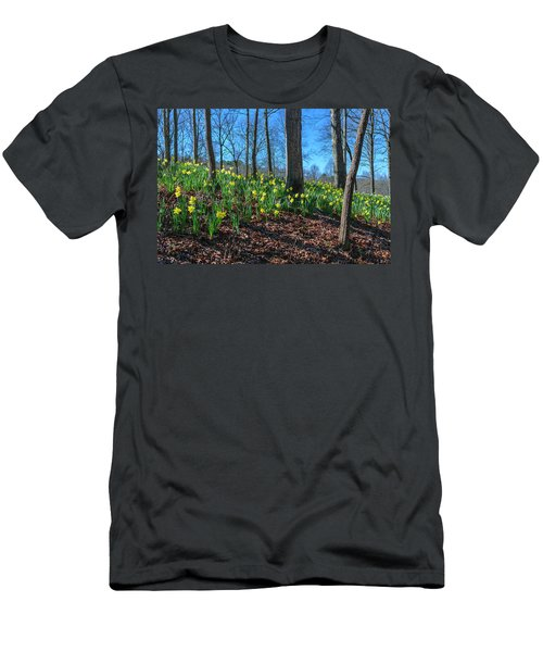 Daffodils On Hillside Men's T-Shirt (Athletic Fit)