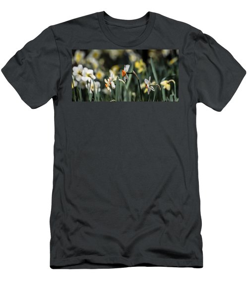 Daffodils Men's T-Shirt (Athletic Fit)