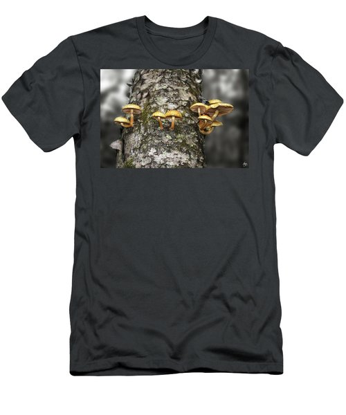 Men's T-Shirt (Athletic Fit) featuring the photograph Dance Around The Ancient Birch by Wayne King