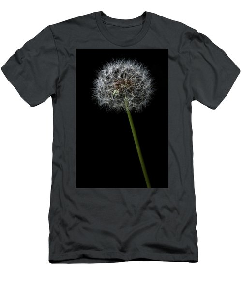 Dandelion 1 Men's T-Shirt (Athletic Fit)