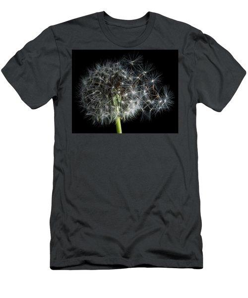 Dandelion 2 Men's T-Shirt (Athletic Fit)